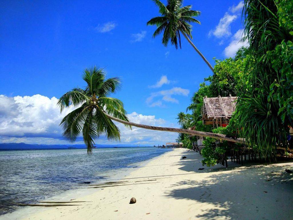 9 Pantai Yang Mempesona Dan Mengagumkan Di Papua Pariwisataku